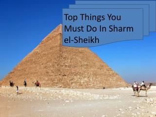 Top Things You Must Do In Sharm el-Sheikh
