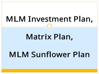 Auto Filling Plan, Breakaways Plan, Tri-Binary Plan, MLM Stair Step, MLM Help Plan, MLM Board Plan