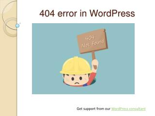 WordPress Support for 404 Error