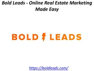Bold Leads - Online Real Estate Marketing Made Easy