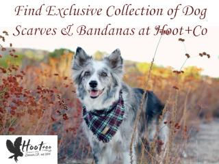 Find Exclusive Collection of Dog Scarves & Bandanas at Hoot Co