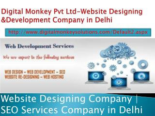 Digital Monkey Pvt Ltd-Website Designing &Development Company in Delhi