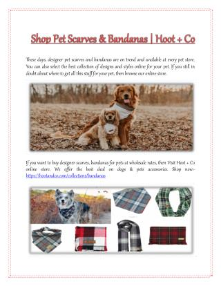 Shop Pet Scarves & Bandanas | Hoot   Co
