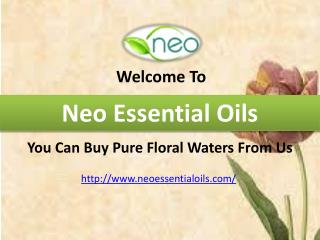 You Can Buy Pure Floral Waters From Us