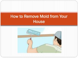 How to Remove Mold from Your House