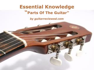 Essential knowledge about guitar
