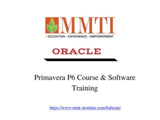 Best Primavera p6 Training in Qatar