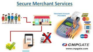 CNP Gate Providing Reliable And Secure Merchant Services