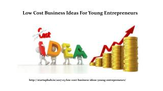 Low Cost Business Ideas For Young Entrepreneurs - Startuphub