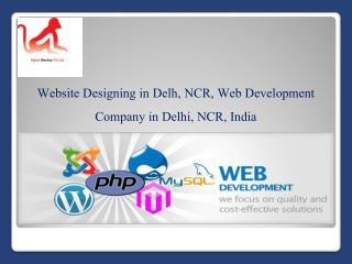 Website Designing in Delh, NCR, Web Development Company in Delhi, NCR, India
