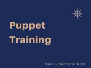 Puppet Training