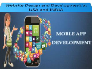 Website Design and Development in USA
