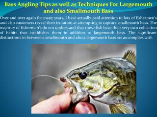 Bass Angling Tips as well as Techniques For Largemouth and also Smallmouth Bass