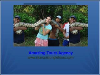 Amazing Tour Agency