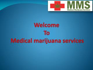 Get Best Medical Cannabis Treatment In Canada By Experience Doctors Teams.