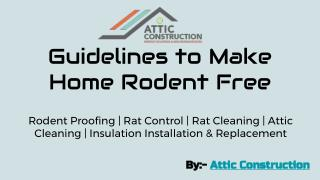 Guidelines to Make Home Rodent Free- Attic Construction Inc.