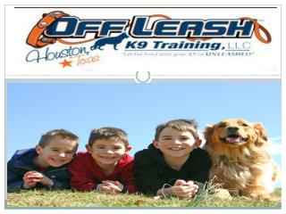 Dog training Services in Baton Rouge Louisiana