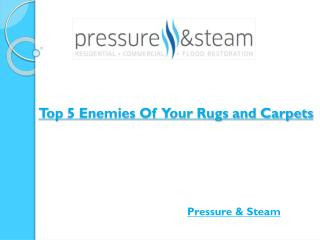 Top 5 Enemies Of Your Rugs and Carpets