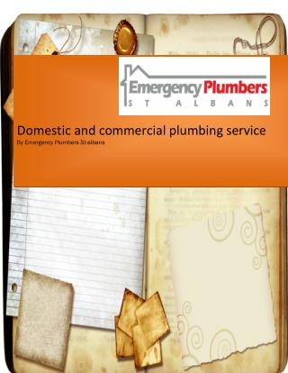 Domestic and commercial plumbing service