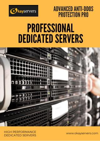 Professional Dedicated Servers