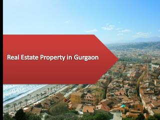 Real Estate Property in Gurgaon