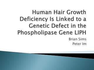 Human Hair Growth Deficiency Is Linked to a Genetic Defect in the Phospholipase Gene LIPH