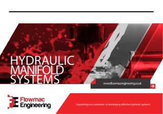Standard Hydraulic Manifold Systems in Stainless Steel