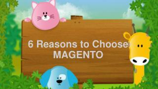 6 Reasons to Choose MAGENTO