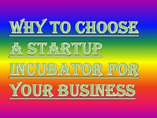 Choosing a Business Incubator for Your Startup Business