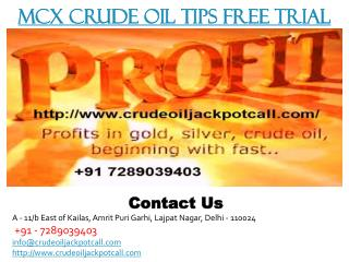MCX Crude Oil Tips Free Trial