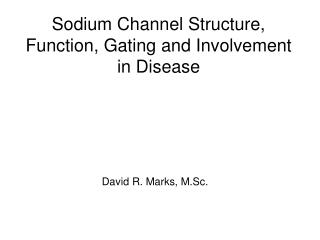 Sodium Channel Structure, Function, Gating and Involvement in Disease