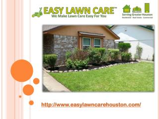 Easy Lawn Care Houston