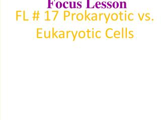 Two Major Divisions of Cells Prokaryotic Cells:  bacteria       Eukaryotic Cells:  plant, animals, fungi, protists