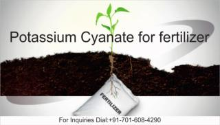Potassium Cyanate For fertilizer