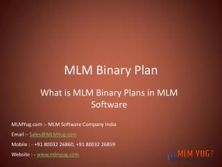 MLM Binary Plan