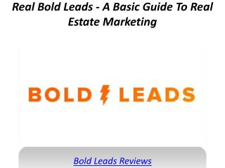Real Bold Leads - A Basic Guide To Real Estate Marketing