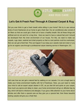 Carpet Cleaning in Washington