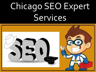 Chicago Seo Experts Services