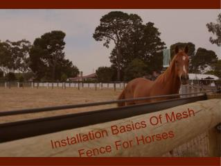 Installation Basics For Mesh Fence For Horses