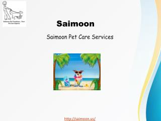 Saimoon - Destination of Dog Friendly Vacations