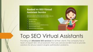 Top SEO VAs Providing An Affordable SEO Services
