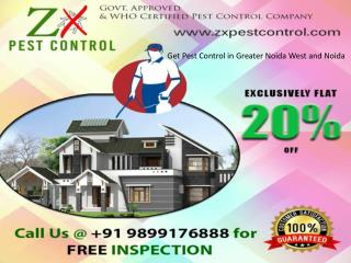 Get Pest Control in Greater Noida West and Noida