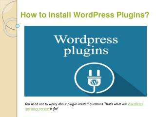 WordPress Support for plugin