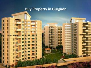 Buy Property in Gurgaon