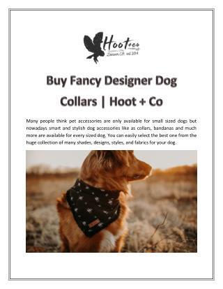 Buy Fancy Designer Dog Collars | Hoot   Co