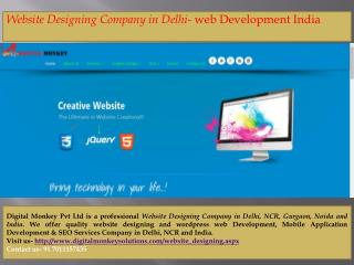 Website Designing Company in Delhi- web Development India
