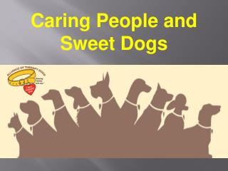 Caring People and Sweet Dogs