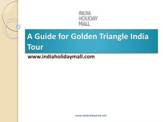 Golden Triangle India Tour Guide