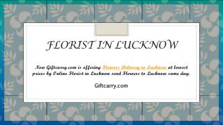 GIFTCARRY.COM – Flowers Delivery in Lucknow | Florist in Lucknow