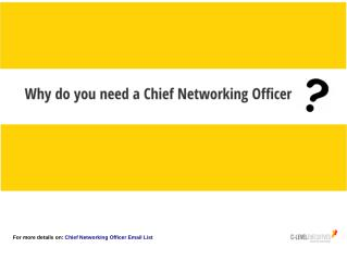 Why Chief Networking Officer is Required?
